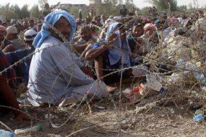 Fallujah Disaster June 2016 1